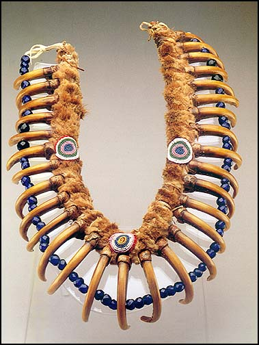 White cloud grizzly bear claw necklace iowa bear claw necklace nebraska 17 in long otter pelt grizzly bearclaws glass beads repatriated from the detroit institute of arts to the iowa tribe mozeypictures Image collections